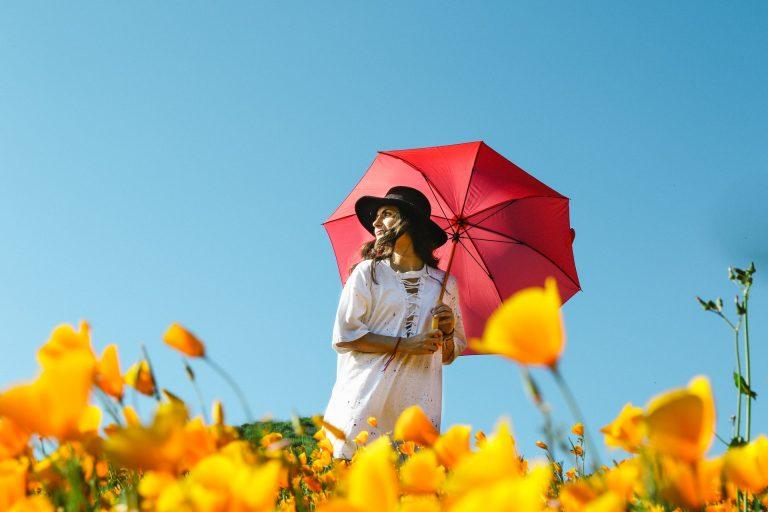 Tipuri de umbrele
